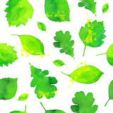 Green watercolor painted leaves seamless pattern Stock Image