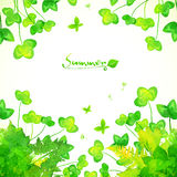 Green Watercolor Painted Summer Clover Leaves Royalty Free Stock Image