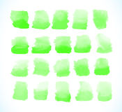 Green watercolor splashes vector Stock Photo