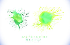 Green watercolor splashes vector Stock Photos