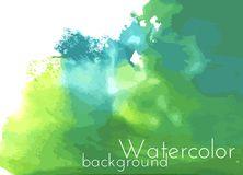 Green watercolor spot. Vector Background. Green watercolor background with green colors, bright decision for business purposes Stock Image
