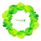 Green watercolor summer leaves vector wreath Stock Photo