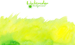 Green watercolor vector background Royalty Free Stock Image
