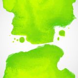 Green watercolor vector background with splashes Royalty Free Stock Images
