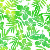 Green watercolor vector hibiscus seamless pattern Stock Photography