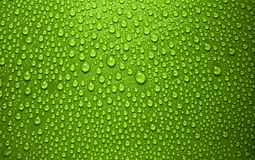 Green waterdrops. Waterdrops on green background from above royalty free stock image