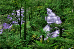 Green waterfall. Triplet Falls in Otway National Park Royalty Free Stock Image