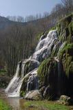 Green waterfall Royalty Free Stock Image
