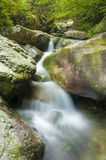 Green waterfall. Nature photo of a green waterfall royalty free stock images