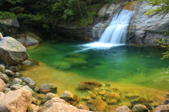 Green waterfall. Photo of natural green waterfall stock images