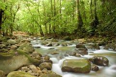 Green waterfall. A photo of natural green waterfall stock photography