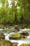 Green waterfall. A photo of natural green waterfall royalty free stock photo
