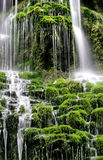 Green waterfall Royalty Free Stock Photo