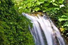 Green waterfall Stock Image