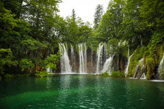Green waterfall royalty free stock photography
