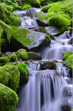 Green waterfalls Royalty Free Stock Photography
