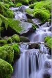 Green waterfalls royalty free stock photography