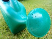 Green watering can on grass stock image