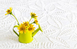 Green watering can and yellow flower on paper texture leaves shape background Royalty Free Stock Photo