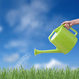 Green watering pot Stock Photography
