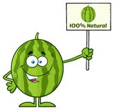 Green Watermelon Fresh Fruit Cartoon Mascot Character Presenting A 100 Percent Natural Sign. Illustration Isolated On White Background Stock Illustration
