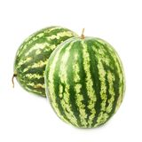 Green watermelon fruit composition isolated Stock Images