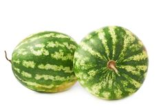 Green watermelon fruit composition isolated Royalty Free Stock Image