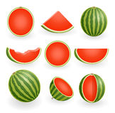 Green Watermelon Set Stock Image