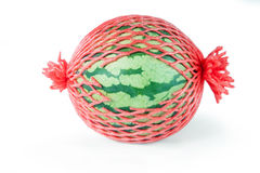 Green watermelon Stock Image
