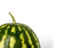 A green watermelon with water drops isolated on Royalty Free Stock Photos