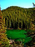 Green Waters. Devil`s Lake in the Cascade Range - central OR royalty free stock photo