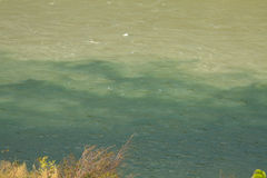 Green waters of the Thompson River mix with the muddier brownish waters of the Fraser River Royalty Free Stock Images
