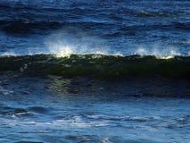 Green wave. Green ocean wave breaking on California coast Stock Images