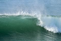 Green wave with blue ocean in background breaking in the ocean Stock Image