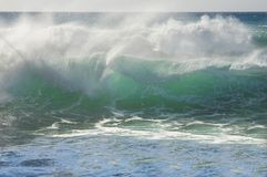 Green wave Stock Images