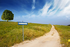 The green way Stock Images