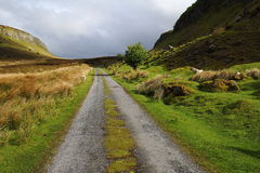 Green way. Way in the middle of Irish mountains Stock Photos