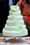 Green wedding cake Royalty Free Stock Photos