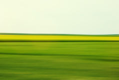 Green weed field drive by motion Stock Photo