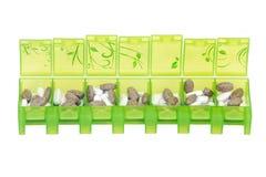 Green weekly pill organizer Stock Photos