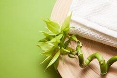 Green wellness background Stock Photos
