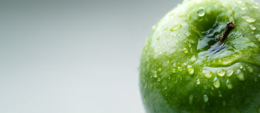 Green wet apple Royalty Free Stock Images