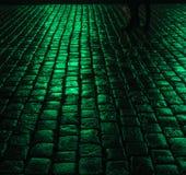 Green wet paving blocks Royalty Free Stock Image