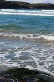 Seaweed and Sea with Waves royalty free stock photo