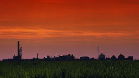 Green Wheat Agricultural Field and Chemical Factory Plant stock video