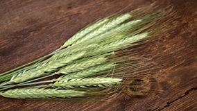 Green wheat. On dark wood Stock Images