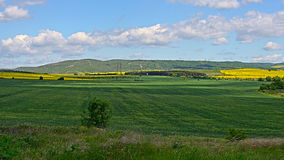 The green wheat field on the background of yellow rapeseed field. S, the beautiful view on a valley among the Balkan mountains in spring Stock Photography