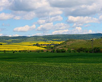 The green wheat field on the background of yellow rapeseed field. S, the beautiful view on a valley among the Balkan mountains in spring Royalty Free Stock Photos