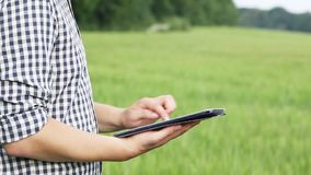 The caucasian male brunette farmer on the field works with a tablet. Scientist working in the field with agricultural stock video