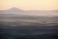 Green wheat hill from palouse Stock Images